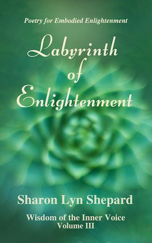 WIV III Labyrinth of Enlightenment Cover:thumbnail