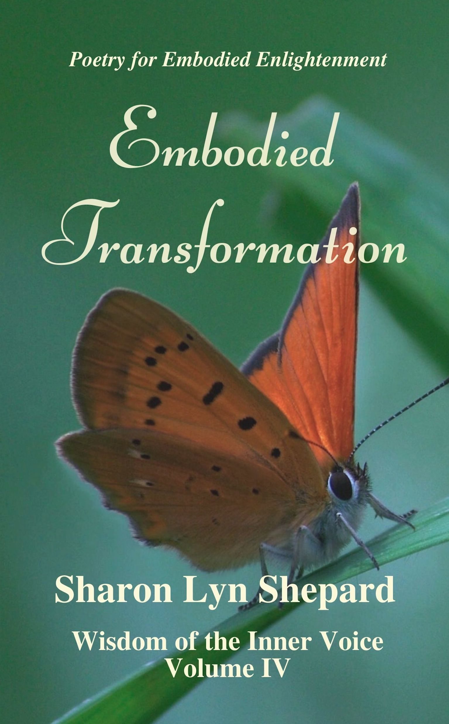 WIV 4 Embodied Transformation Cover:Paperback